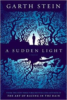 book cover a sudden light