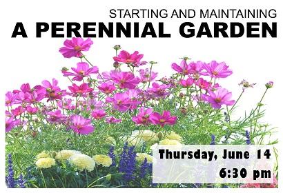 Starting and Maintaining a Perennial Garden, Thursday, June 14, 6:30 pm