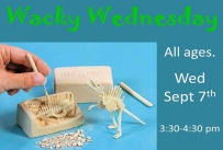 Wacky Wednesday All Ages Wednesday September 7th 3:30-4:30 pm